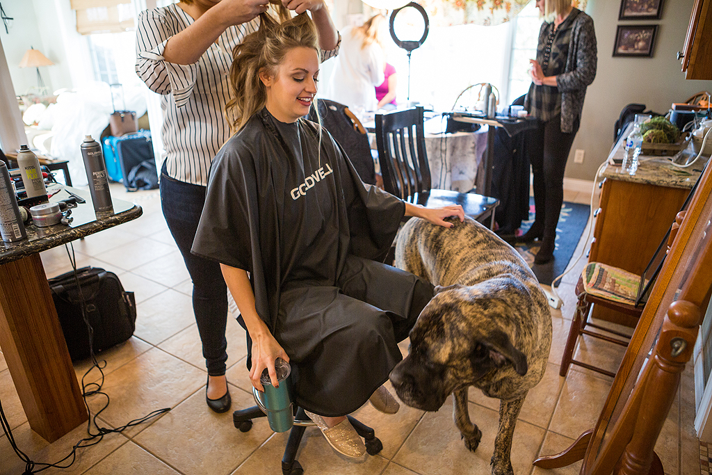 Bride with her dog getting ready