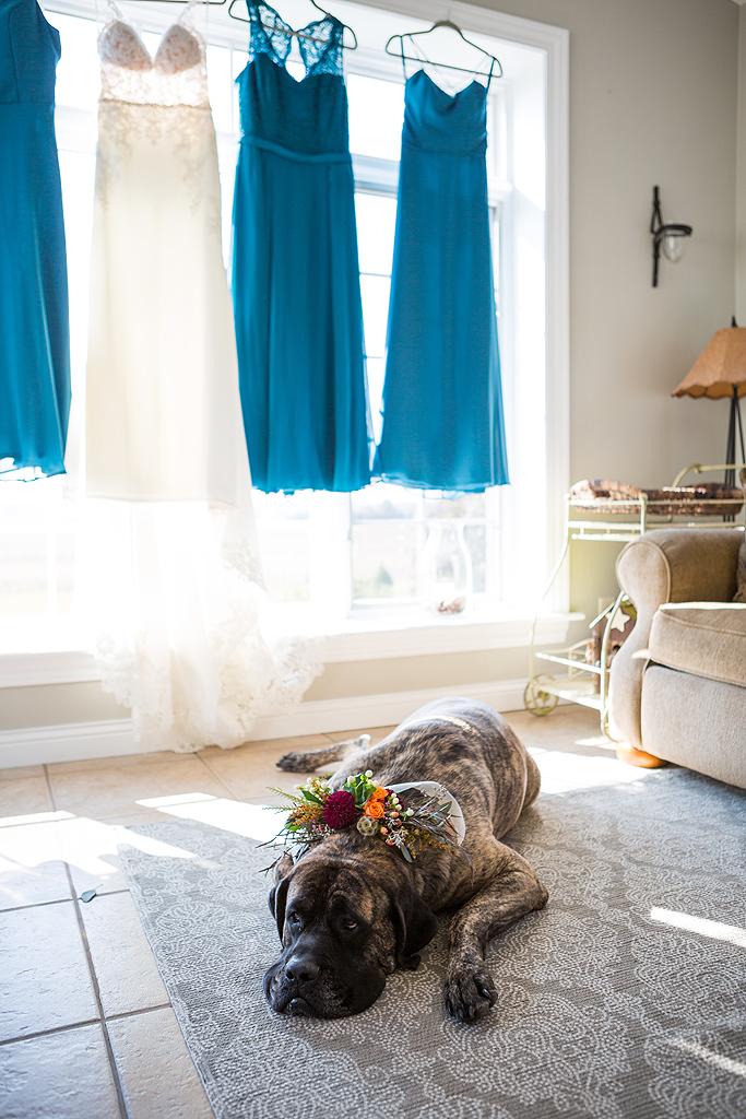 a dog for a bridesmaid