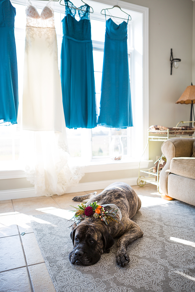 a dog for a bridesmaid
