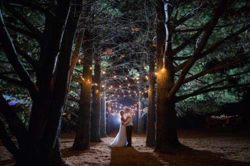 Bride and Groom night time photograph in the pine trees at oak hill in Apple River Illinois