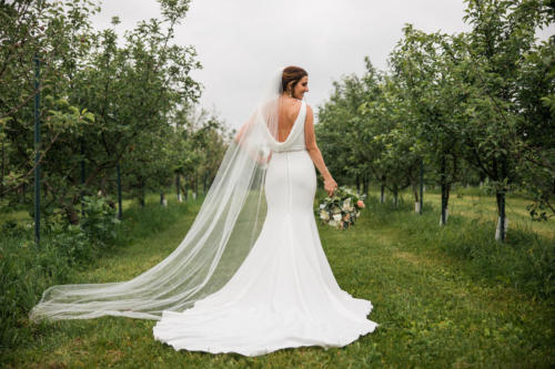Bride with long veil in an apple orchard at Orchard Ridge Farms the Pavilion in Rockton Illinois