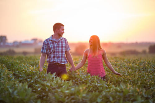 engaged couple walking through farm at sunset