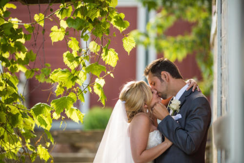 Bride and groom kissing under ivy at Orchard Ridge Farms the Pavilion in Rockton Illinois