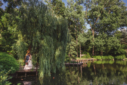 bride and groom under weeping willow trees at anderson japanese gardens in rockford illinois
