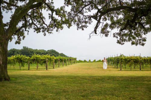 bride walking out of vineyard at mceachran winery in caledonia illinois