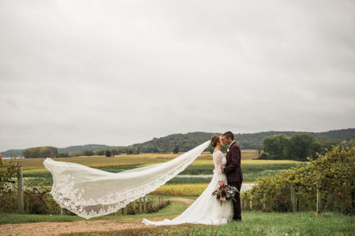 bride with very long veil in vineyard