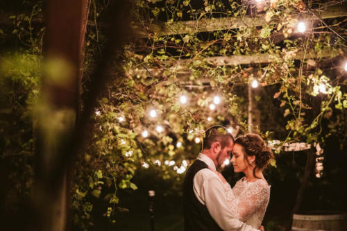 bride and groom at night in a vineyard